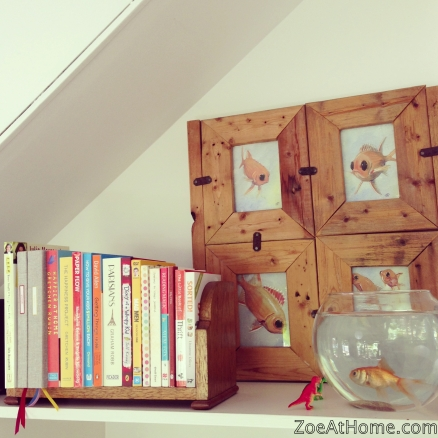 How to display books