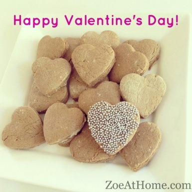 Something to think about on Valentine's Day ZoeAtHome.com