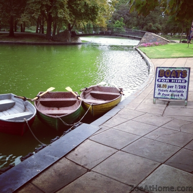 Local park boats