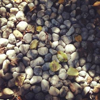Stones in Japanese garden ZoeAtHome.com